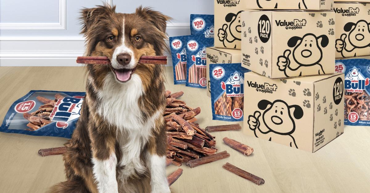 Best bully sticks for dogs